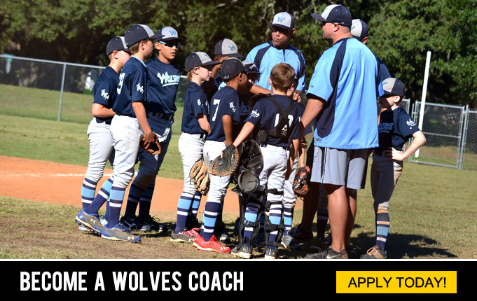 Fishhawk Wolves | Travel Baseball
